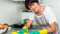 Помощница по хозяйству: За или Против