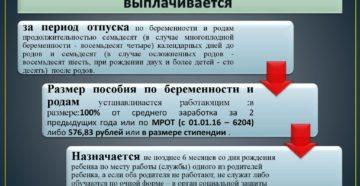 Пособия и льготы по беременности и родам (Москва, 2010)