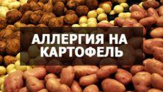 Причиной аллергии может быть обычная картошка